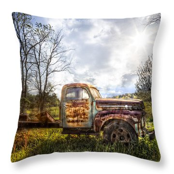 Country Afternoon Throw Pillow