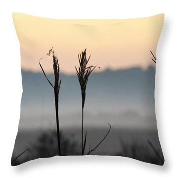 Hayseed Johnny Throw Pillow by John Glass