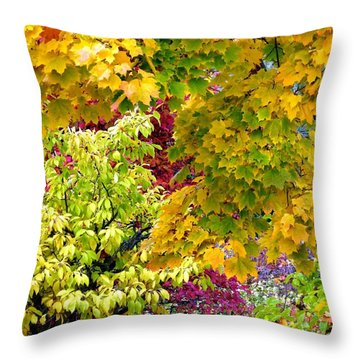 Country Color 15 Throw Pillow