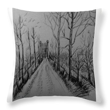 Country Driveway Throw Pillow by Hae Kim