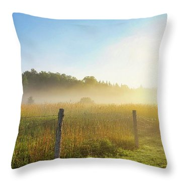 Country Fencerow Throw Pillow