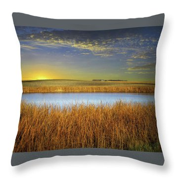 Country Field 2 Throw Pillow