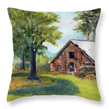 Country Framework Throw Pillow