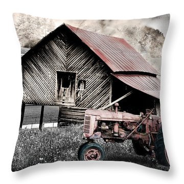 Country Throw Pillow by Gray  Artus