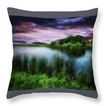Country Lake Throw Pillow