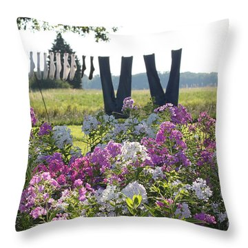 Country Laundry Throw Pillow by Lauri Novak