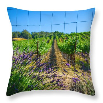 Country Lavender V Throw Pillow