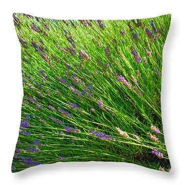 Country Lavender Vi Throw Pillow