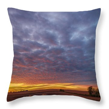 Throw Pillow featuring the photograph Country Living by Sebastian Musial