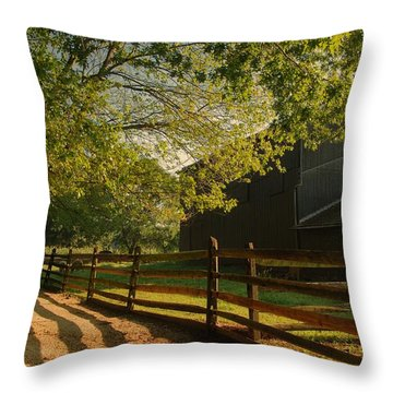 Country Morning - Holmdel Park Throw Pillow