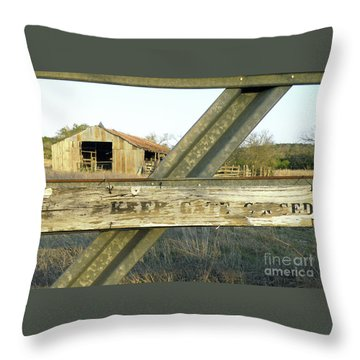 Throw Pillow featuring the photograph Country Quiet by Joe Jake Pratt