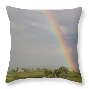 Country Rainbow Throw Pillow by James BO  Insogna