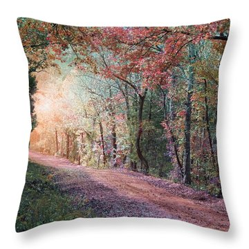 Country Road Throw Pillow by Bill Stephens