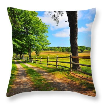 Country Road Throw Pillow by Catherine Reusch Daley
