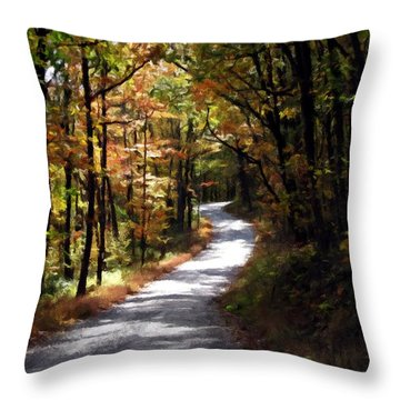 Country Road Throw Pillow by David Dehner