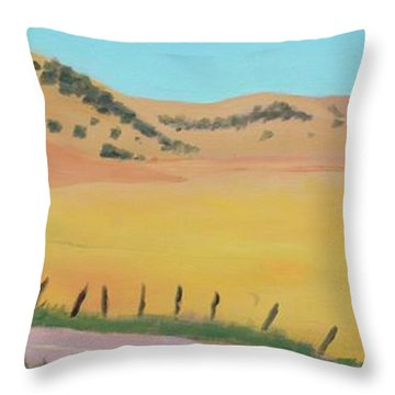 Country Road Throw Pillow by Gary Coleman