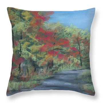 Country Road II Throw Pillow by Pete Maier