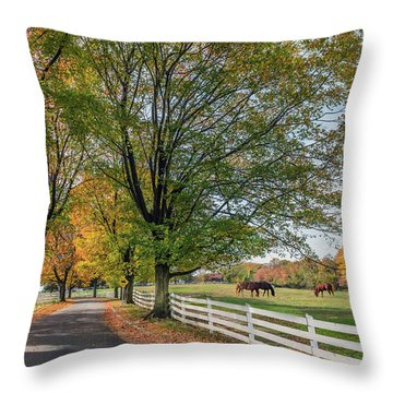 Country Road In Rural Maryland During Autumn Throw Pillow
