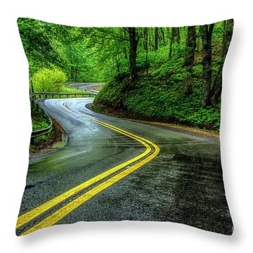 Country Road In Spring Rain Throw Pillow