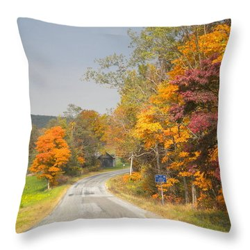 Throw Pillow featuring the photograph Country Road In The Fall by Diannah Lynch