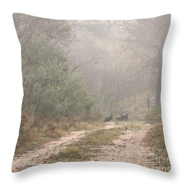 Country Road In The Morning Throw Pillow