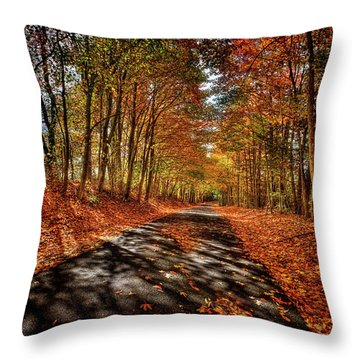 Country Road Throw Pillow by Mark Allen