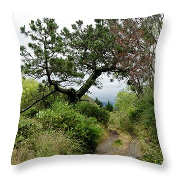 Country Road. New Zealand Throw Pillow