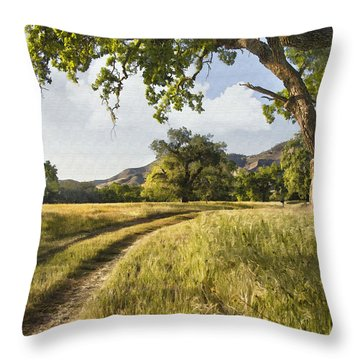 Country Road Throw Pillow by Sharon Foster