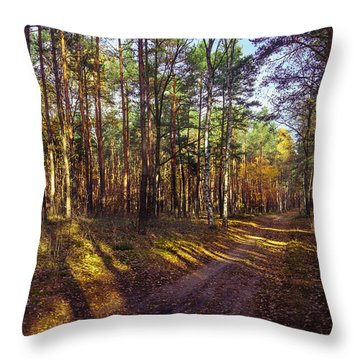 Country Road Through The Forest Throw Pillow