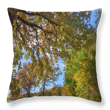 Country Road Throw Pillow by Tim Fitzharris