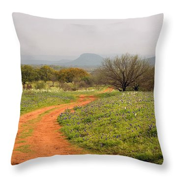 Country Road With Wild Flowers Throw Pillow
