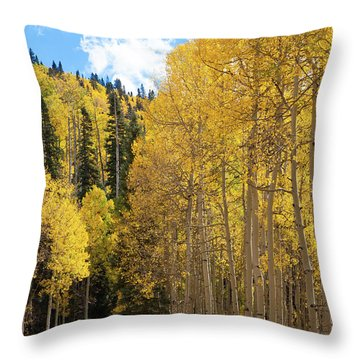 Throw Pillow featuring the photograph Country Roads by David Chandler