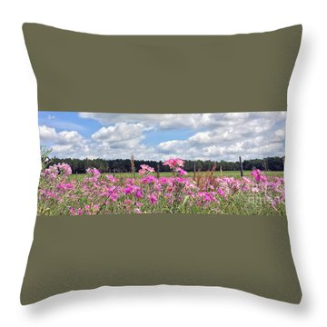 Throw Pillow featuring the photograph Country Roads by LeeAnn Kendall