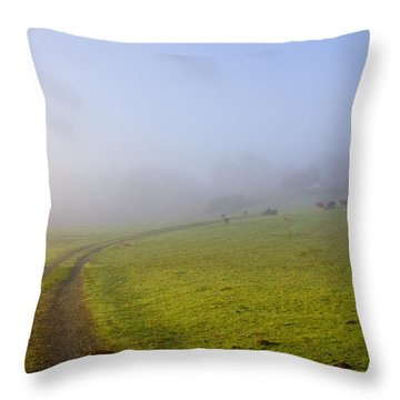 Country Roads Throw Pillow by Mike  Dawson