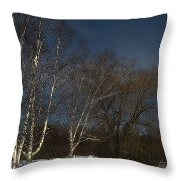 Country Roadside Birch Throw Pillow