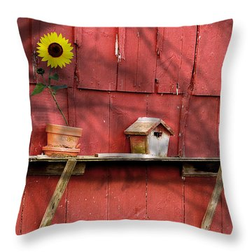 Country Still Life II Throw Pillow