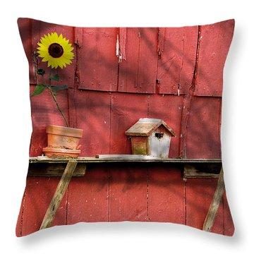 Flower Pots Throw Pillows