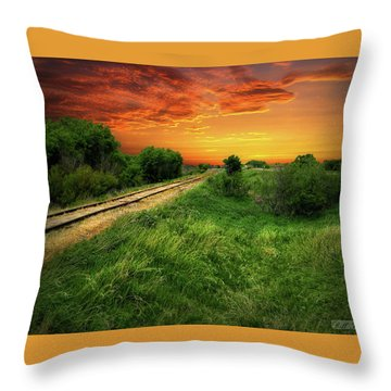 Country Tracks 2 Throw Pillow
