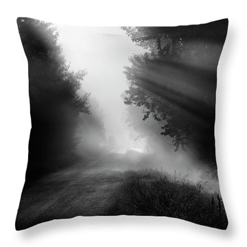 Country Trails Throw Pillow by Dan Jurak