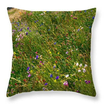 Country Wildflowers I   Throw Pillow