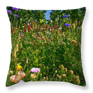 Country Wildflowers IIi Throw Pillow