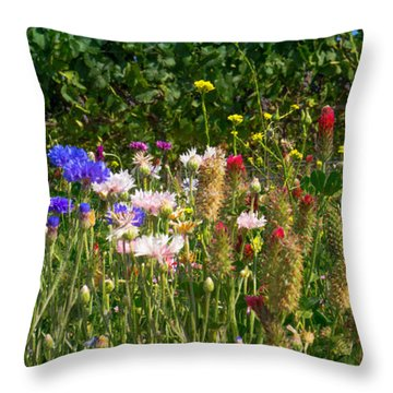 Country Wildflowers Iv Throw Pillow