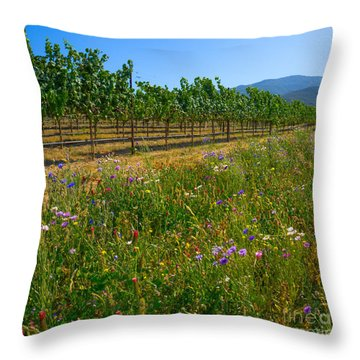 Country Wildflowers V Throw Pillow