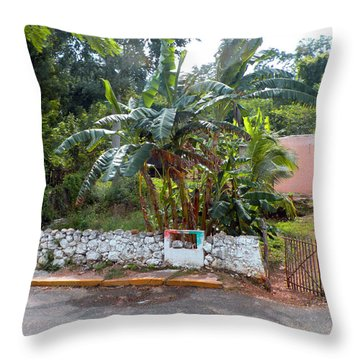 Countryside Along The Yucatan Peninsula Throw Pillow
