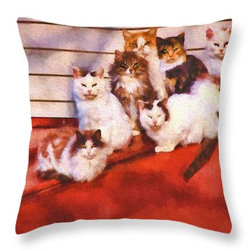 Countryside Cats Throw Pillow