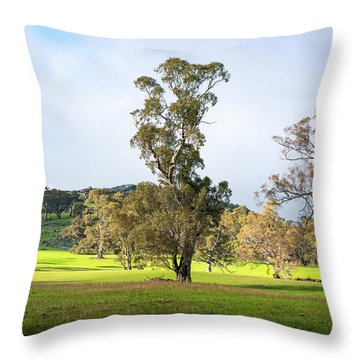 Countryside Victoria Australia Throw Pillow