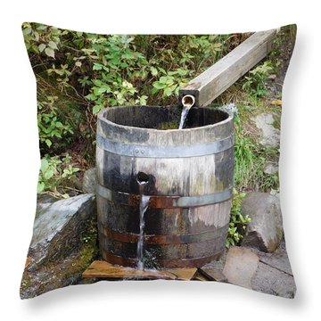 Countryside Water Feature Throw Pillow by Catherine Gagne