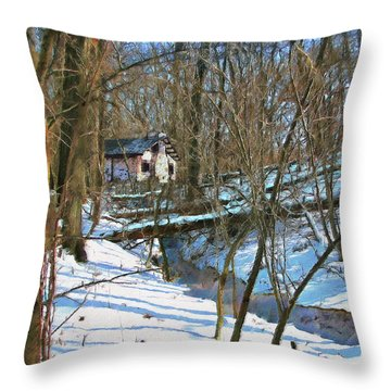 County Field House Throw Pillow