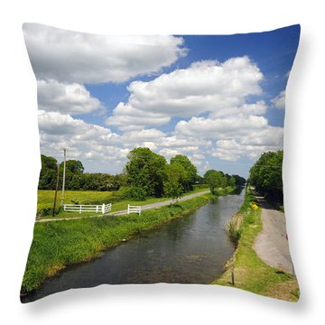 County Kilkenny Throw Pillow by Cindy Murphy - NightVisions