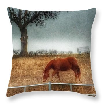 County Road 4100 Throw Pillow